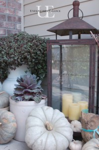 Fall outdoor vignette