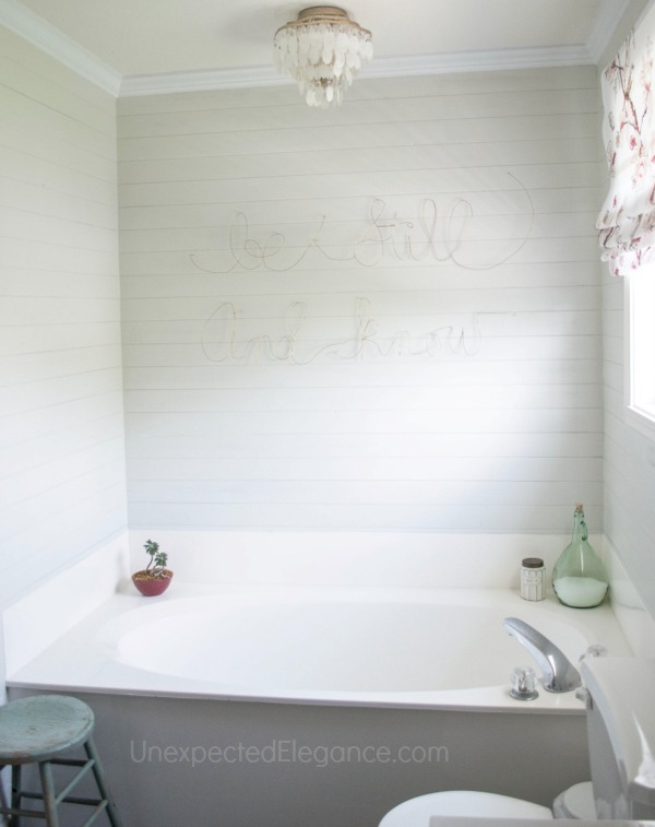 Master Bathroom Makeover on a Budget-1-8.jpg