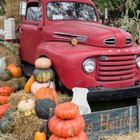 Country Living Fair Ohio 2014-1-29