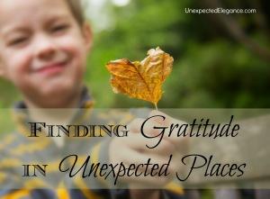 finding gratitude (1)