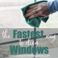 The FASTEST Way to Clean Your Windows-feature