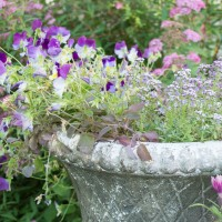 flower pots-1-8