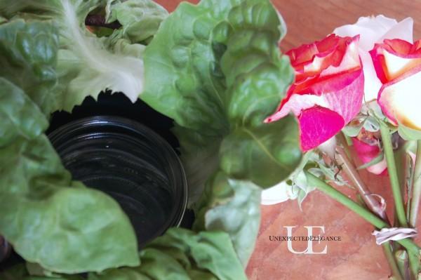 Arranging Lettuce for centerpiece