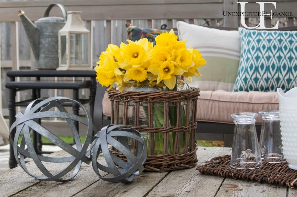 Daffodiles at Unexpected Elegance (1 of 1)