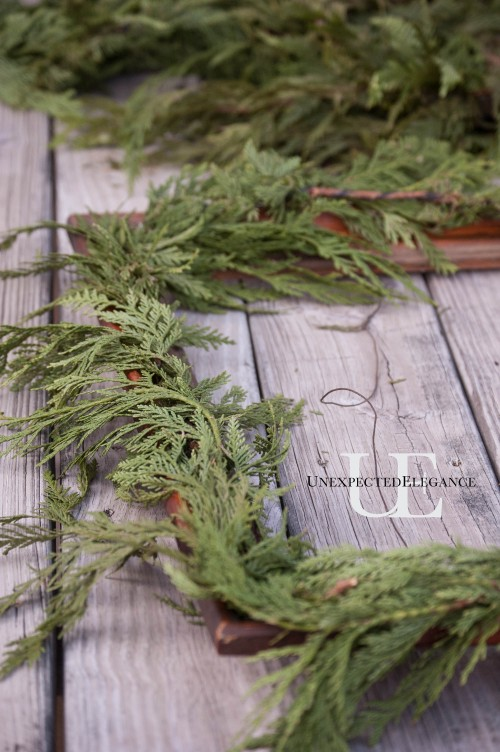 Greenery Frame Tutorial from Unexpected Elegance-1-5