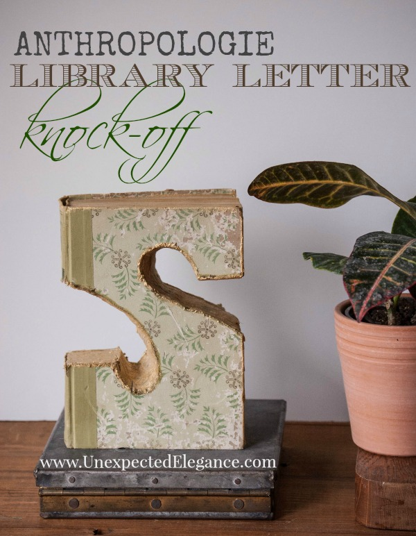 Antropologie Library Letter Knock-off