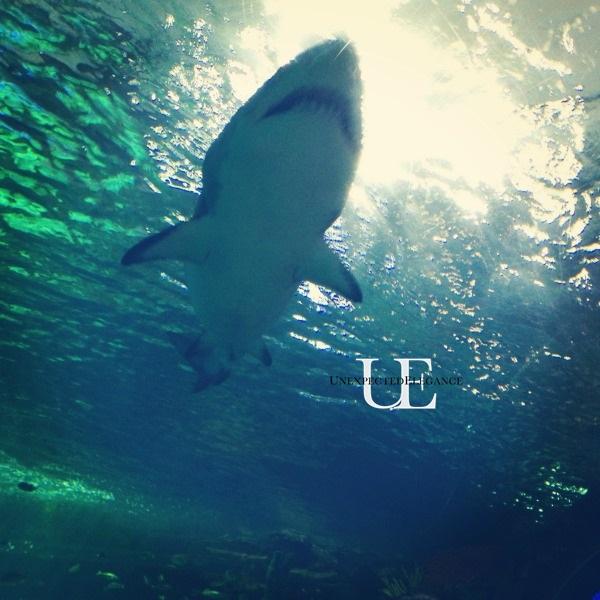 Ripley's Aquarium in Toronto