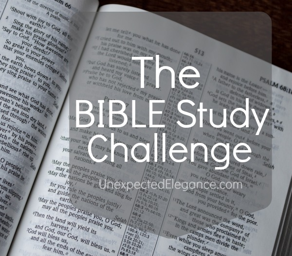 Bible Study Challenge-1.jpg