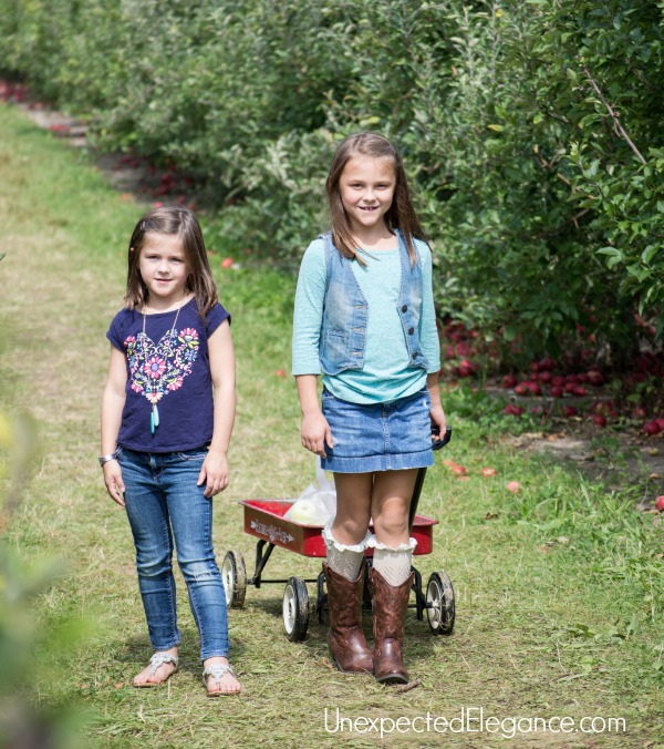 Apple Picking in the FALL-1-3