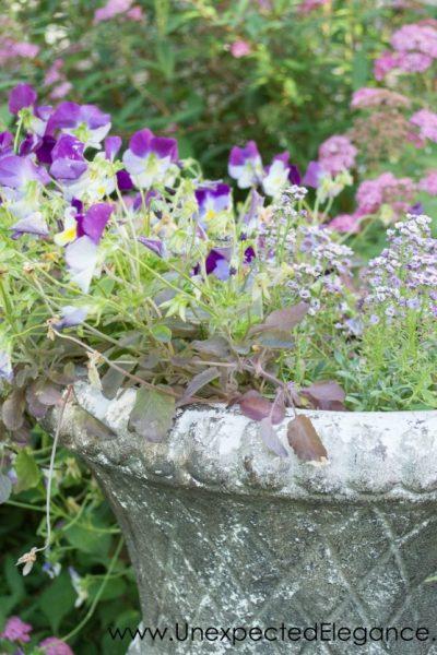 Best Ways to Save Money on Gardening