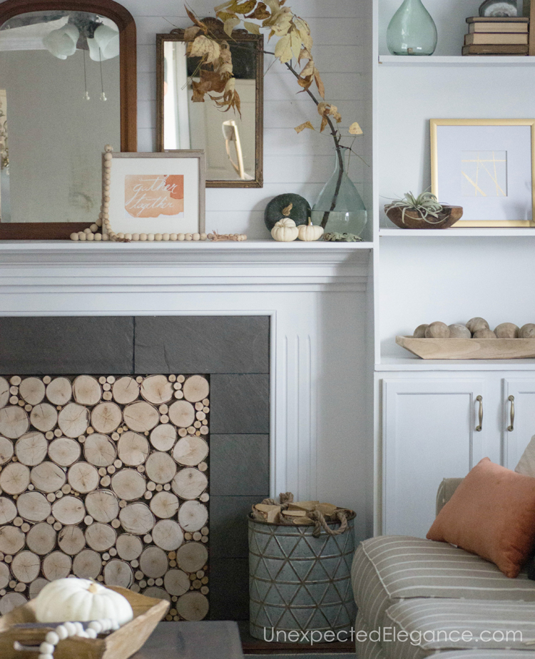Want a beautiful mantle, but need some ideas?!? Get some inspiration from one blogger who used natural elements to bring in the season.