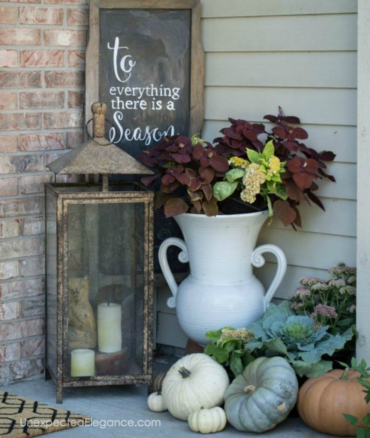 Need some ideas on how to save money on fall decor? Check out these 5 inexpensive options!