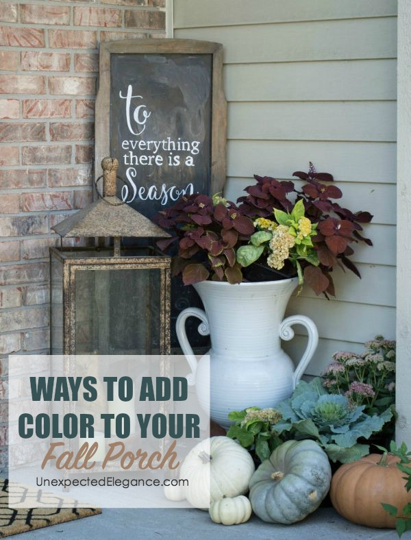 Get some ideas for ways to add color to your fall porch without spending a ton of money! Sometimes the best decor is even FREE.