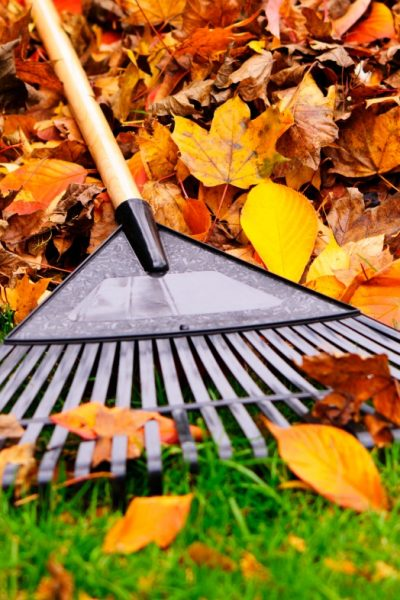 Fall Maintenance Tips for Inside and Outside Your Home