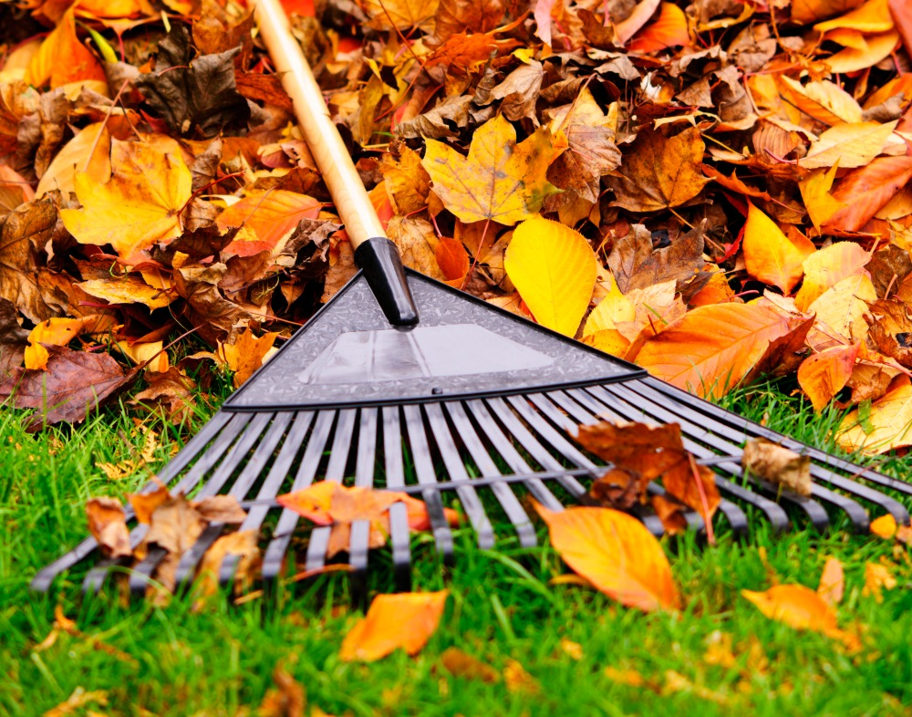 Get your house ready for winter with a few maintenance tips this fall.