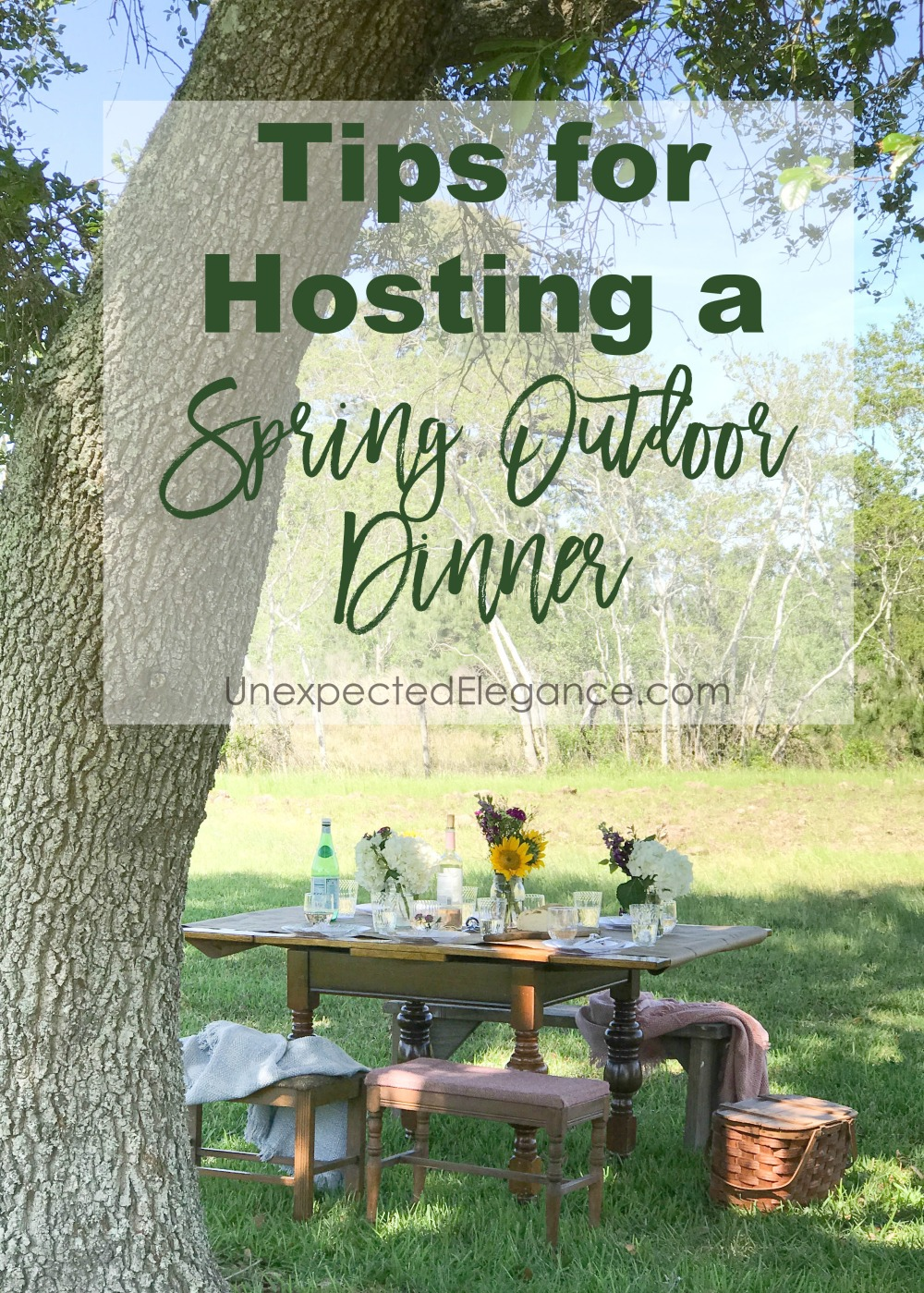 It's spring and time to get back outside! Invite some friends over and host a spring outdoor dinner in the backyard with these great tips!